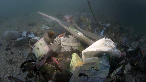 Plastic garbage and other debris floating in the tide mark underwater in Bunaken Island, Sulawesi