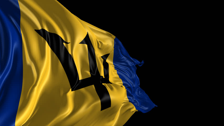 Image result for barbados flag
