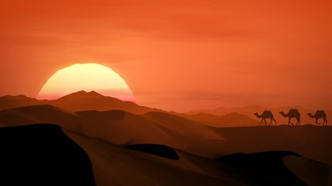 Sand dunes at sunset with camels