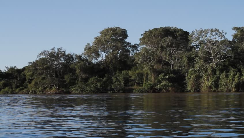 Pantanal wetlands in Brazil. Boat heading down the river.