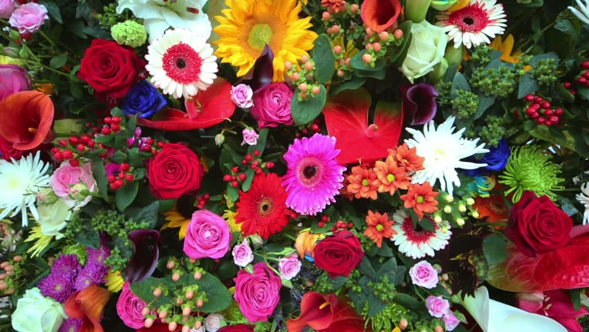 Beautiful bright flowers in bouquet of callas, lilies, roses, gerberas.