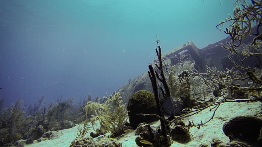 Exploration of an Abandoned Shipwreck Deep Underwater in San Andres, Colombia