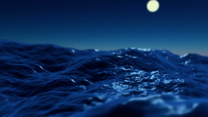 Ocean At Night Underwater Images Galleries With A Bite