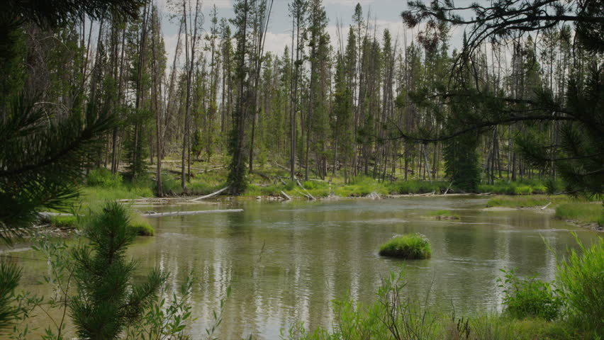 Slow motion wide shot of lake in forest / Redfish Lake, Idaho, United States | Shutterstock HD Video #6175682