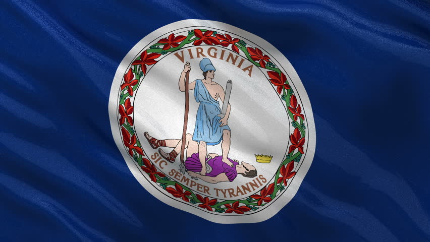 US state flag of Virginia gently waving in the wind. Seamless loop with high quality fabric material.