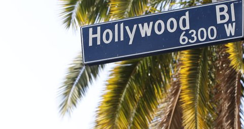 Traffic Pedestrian Crosswalk Hollywood Street Sign Los Angeles Palm Trees USA LA ( Ultra High Definition, Ultra HD, UHD, 4K, 2160P, 4096x2160 )