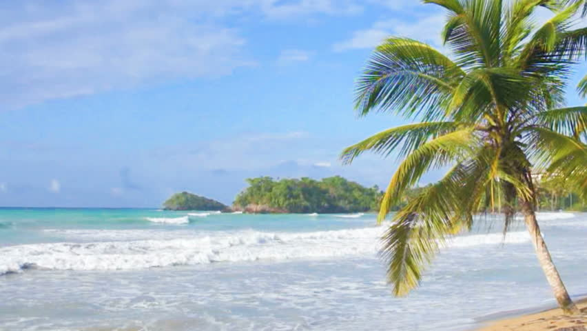Tropical paradise | Shutterstock HD Video #6255272