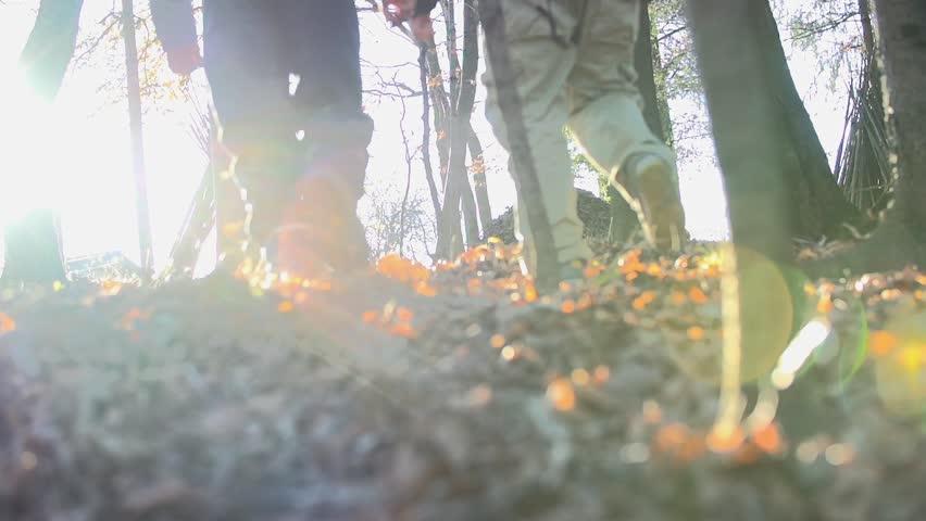 Man walk away through the forest