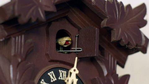 A cuckoo clock cuckoos 12 times. 11345