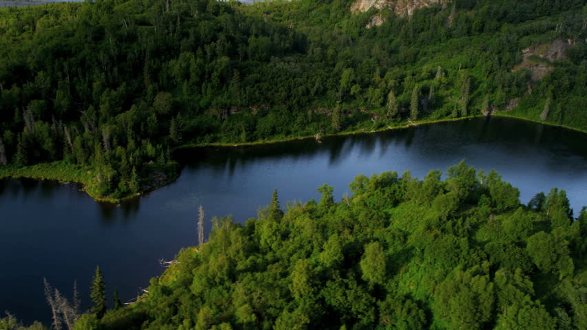 Aerial View Of Remote Spruce Forest Wilderness USA Aerial View - Usa northern hemisphere