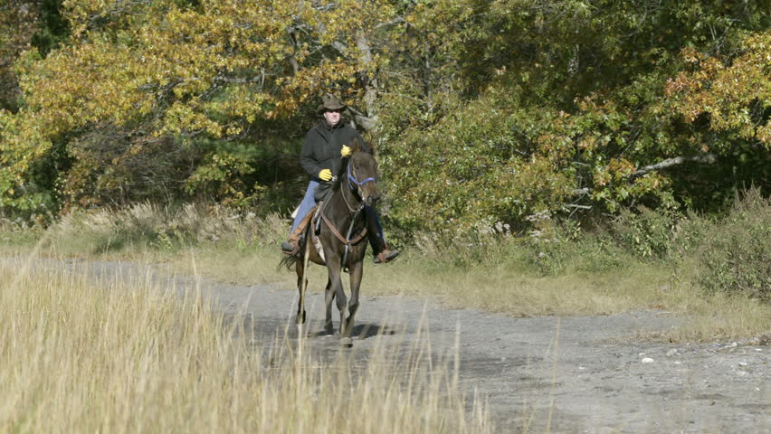 A man rides on a galloping horse, through a field, in slow motion