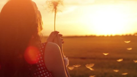 Woman Dandelion Summer Dream Field Sunset Dreams Concept