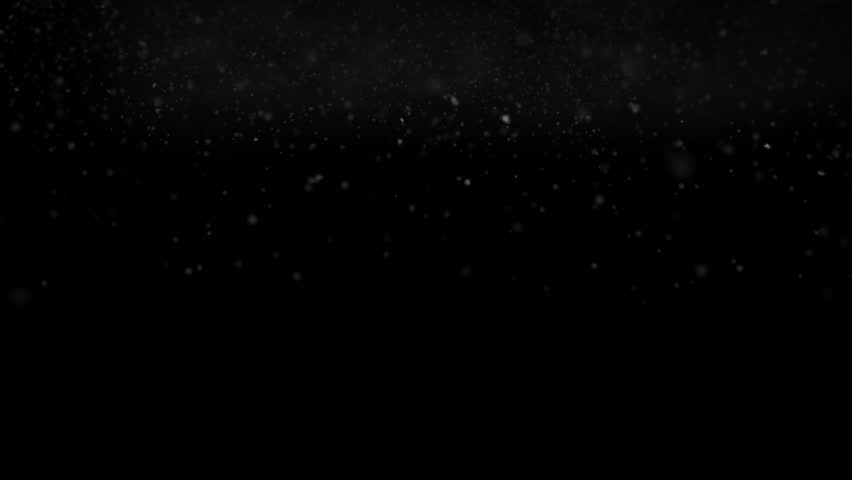 Real Snow Fall  + Alpha Channel   Shutterstock HD Video #6574373