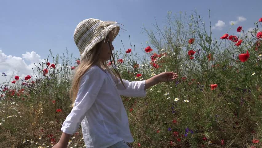Ultra HD 4K View Happy Little Girl Walking in Farmland, Small Countrywoman Child in Poppy Flower Field, Children in Countryside, POV | Shutterstock HD Video #7329919