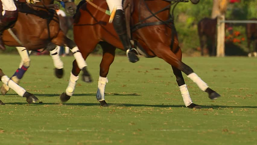 Footage of a polo match showing players riding over a ball.