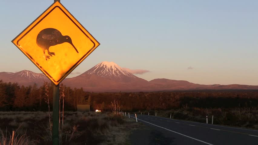 Kiwi road sign and Mount Ngauruhoe with traffic at dusk on the Volcanic Plateau, New Zealand