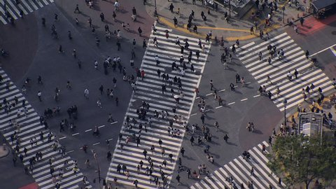 Aerial people Shibuya scramble crossing pedestrian intersection Downtown city skyscrapers travel Tokyo Japan Asia