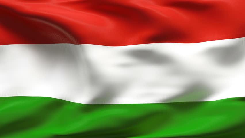 Výsledek obrázku pro hungary flag