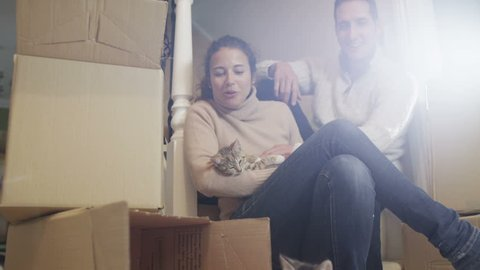 Couple with kittens move into new home. Young cats play with packing boxes as man and woman look on with a smile.