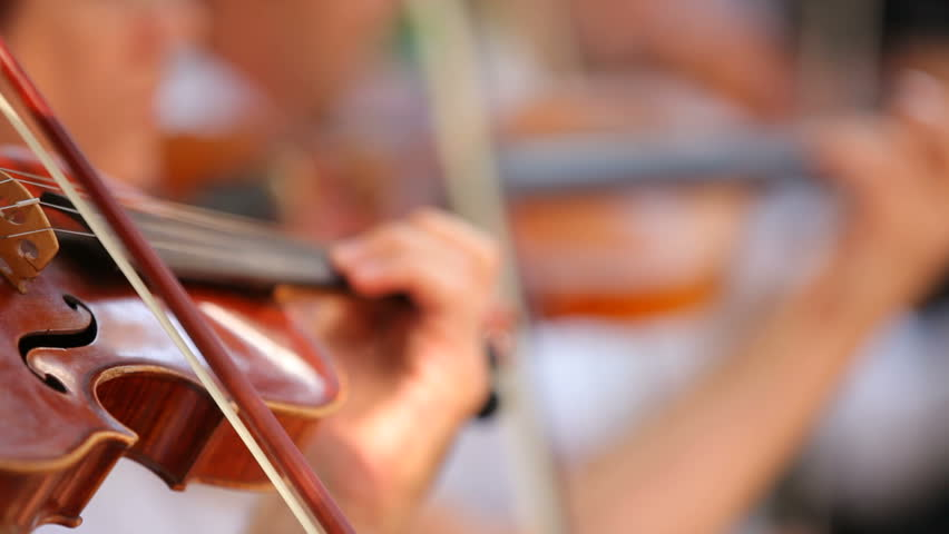 Violinists in the orchestra. Several violinists played professional tone. The background is blurred.