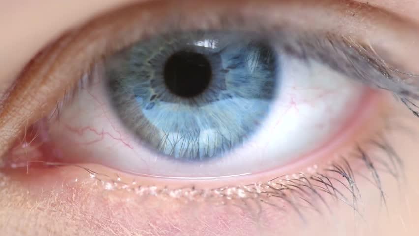 Blue Human Eye. Beauty Macro Close-up Woman's eye blinking. Beautiful young girl eyes closeup. Full HD 1080p
