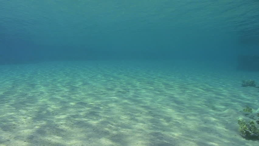 Wide Angle Scenic Shot In Clear Blue Water Of Ripples Sunlight On The Floor  Of A