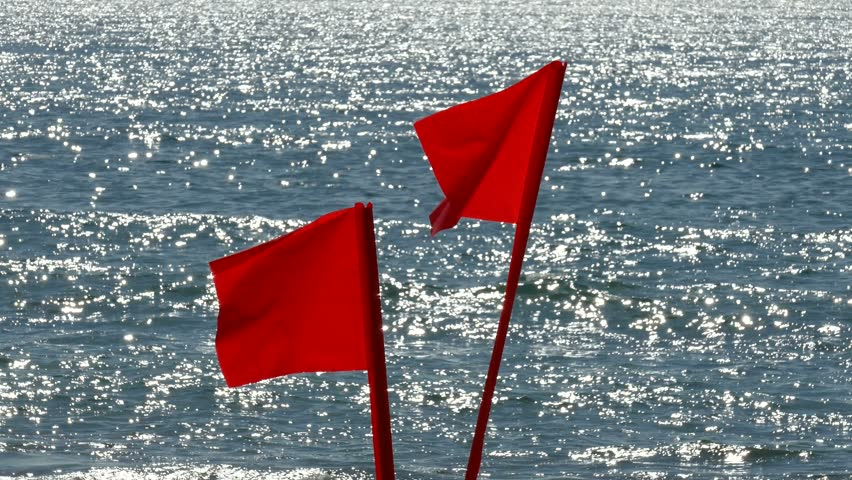 Beach lifeguard warning flags with Pacific ocean background telephoto. | Shutterstock HD Video #9048802