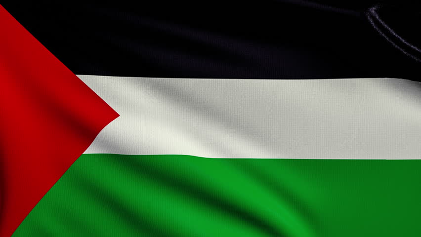 3d animation flag of Palestine looping | Shutterstock HD Video #9213782