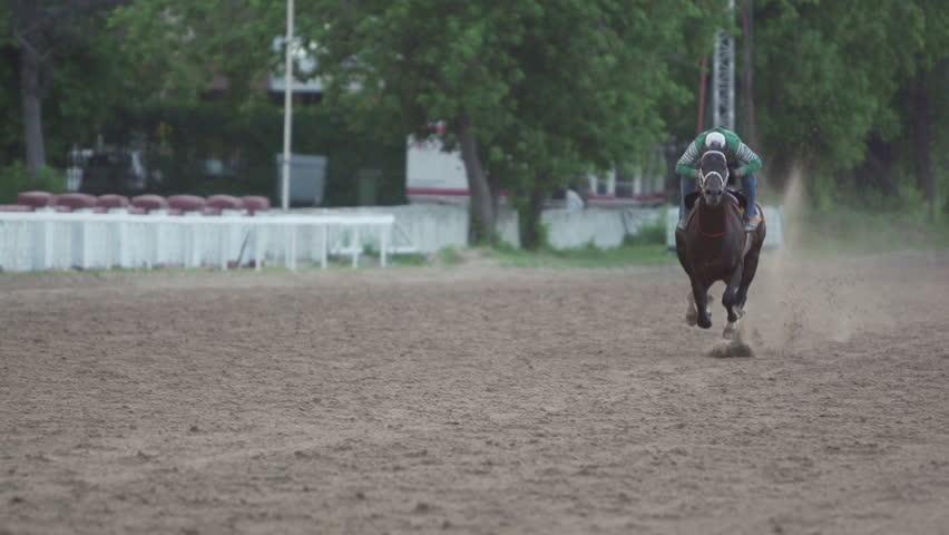 jockey and horse runs gallop, slow motion 240 #9280835