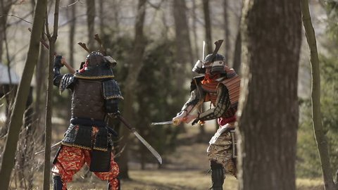 a battle between two samurai in the forest