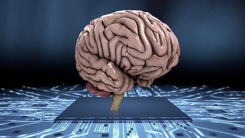 Simulating the human brain loop dynamic Conceptual animation showing the simulation of the human brain. Seamless loop.