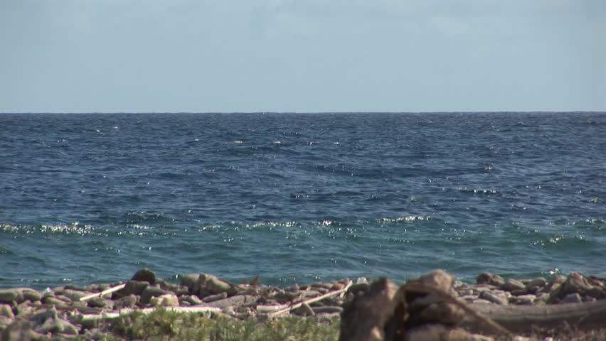 Sea - zoom out through window of ruin. Shot on Bonaire, Netherlands Antilles.