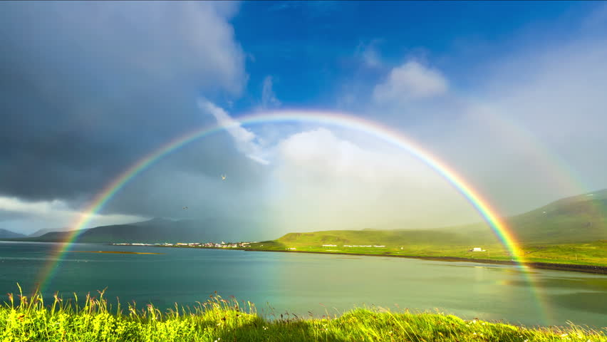 Iceland - 15 June 2015: Grass moving in the breeze and rainbow in Neighborhoods Grundarfjordur (Grundarfjörður) - a favorite place for nesting birds. 4K TimeLapse   Shutterstock HD Video #9901082
